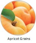 apricot-grains